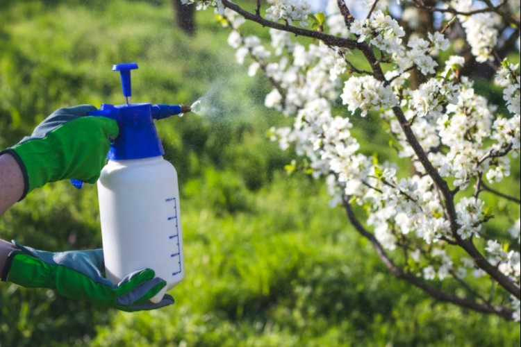 Tips On Using A Garden Sprayer