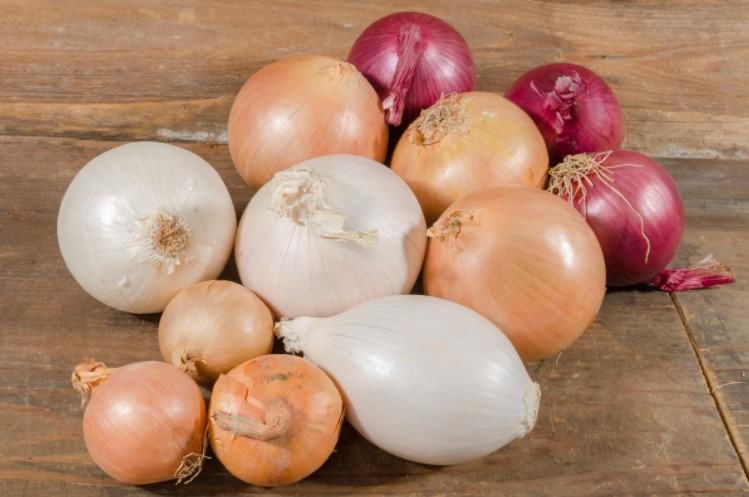 Getting To Know More about Onions